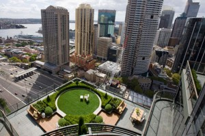 Green Rooftop in Sydney CBD