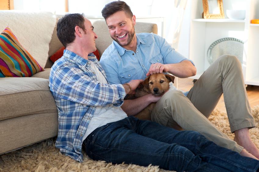 Pet Dog Ownership Dispute - Help?